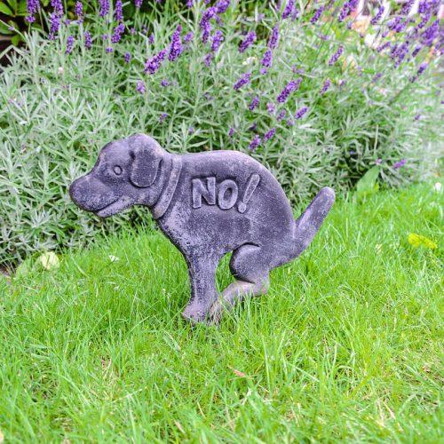 Kutya a kertben kellemetlenségekkel