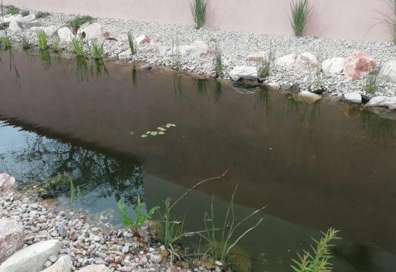 Kerti tó és stég